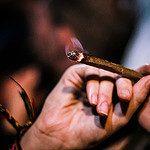 Drogen & Rausch