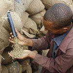 Fairer Handel & Entwicklungspolitik